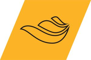 ANSYS Fluids Logo
